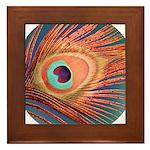 Peacock Framed Tile
