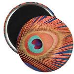 "Peacock 2.25"" Magnet (100 pack)"