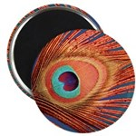 "Peacock 2.25"" Magnet (10 pack)"