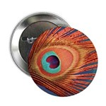 """Peacock 2.25"""" Button (100 pack)"""