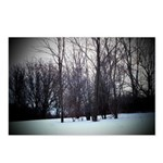 Winter Trees Postcards (Package of 8)