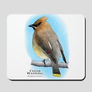 Cedar Waxwing Mousepad