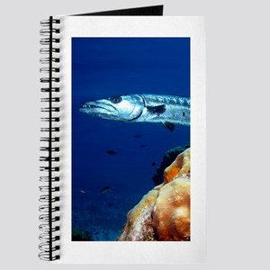 Cuda Journal