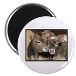 """Not Food- Cows 2.25"""" Magnet (100 pack)"""