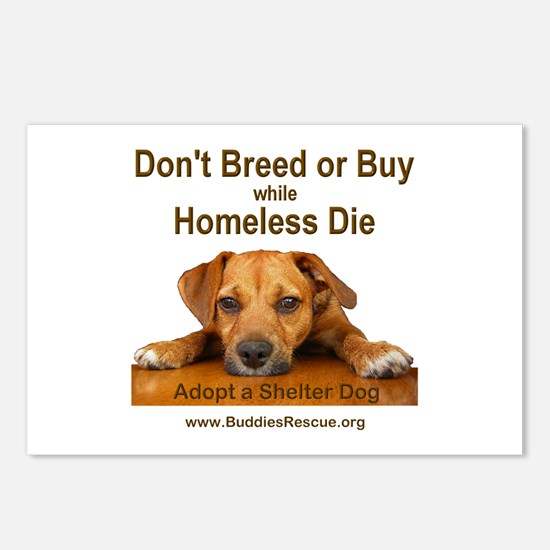 Adopt a Shelter Dog Postcards (Package of 8)