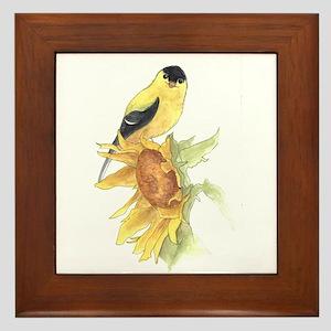 Goldfinch Framed Tile