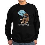 Please Don't Wear My Friends Sweatshirt (dark)