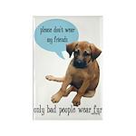 Please Don't Wear My Friends Rectangle Magnet (100