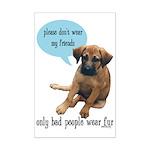 Please Don't Wear My Friends Mini Poster Print