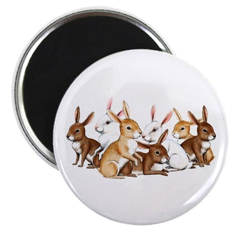 Bunnies Galore Magnet
