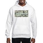 Men's Hooded Sweatshirt (lite) 1