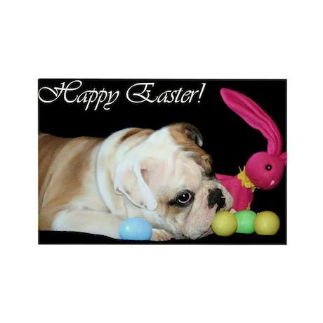 Happy Easter Bulldog Rectangle Magnet (100 pack)