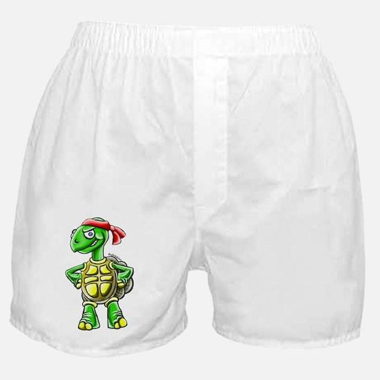 Ninja Turtle Tortoise Boxer Shorts