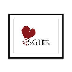 Seattle Grace Hospital Framed Panel Print