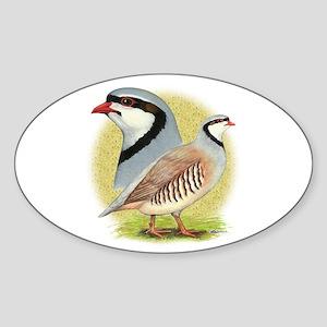 Partridge Chukar Sticker (Oval)