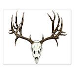 Deer skull Small Poster