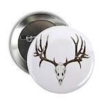 Deer skull 2.25