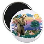 St.Francis #2 / Pekingese #1 Magnet