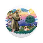 St.Francis #2 / Pekingese #1 3.5