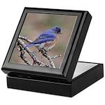 Perching Bluebird Keepsake Box