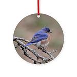 Perching Bluebird Ornament (Round)