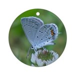 Eastern Tailed Blue Butterfly Ornament (Round)