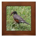 Robin with Worm Framed Tile