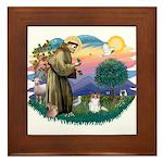 St. Francis #2 / Papillon (sw) Framed Tile