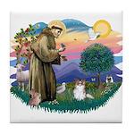St. Francis #2 / Papillon (sw) Tile Coaster