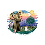 St. Francis #2 / Papillon (sw) Mini Poster Print