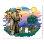 St. Francis #2 / Papillon (sw) Small Poster