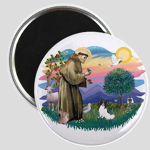 St. Francis #2 / Papillon Magnet