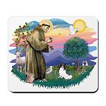 St. Francis #2 / Papillon Mousepad