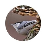 White-breasted Nuthatch Ornament (Round)