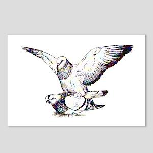 Pigeon Love Postcards (Package of 8)