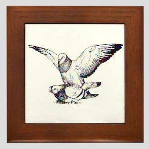 Pigeon Love Framed Tile