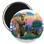 St Francis #2 / Rottweiler 2.25