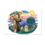 St Francis #2/ Lhasa Apso #9 Mini Poster Print
