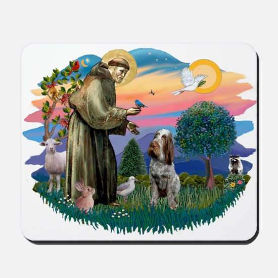 St Francis #2/ Spinone Mousepad