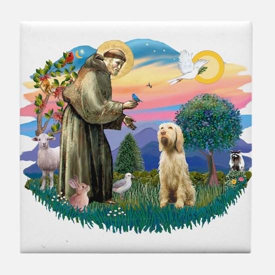 St. Fr. #2/ Italian Spinone Tile Coaster