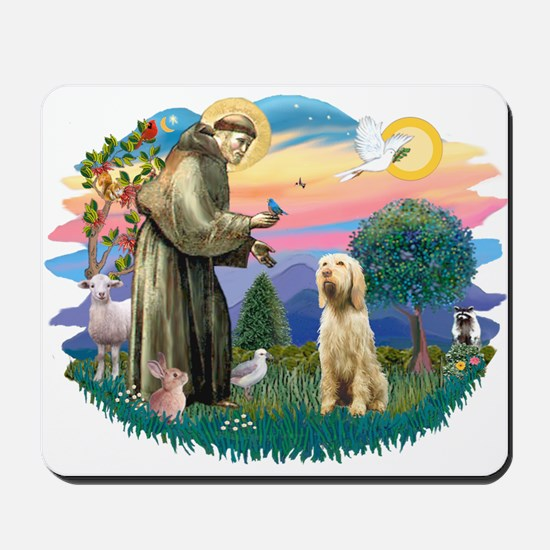 St. Fr. #2/ Italian Spinone Mousepad