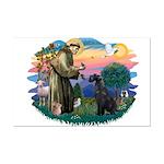 St Fran./ G Schnauzer (blk) Mini Poster Print