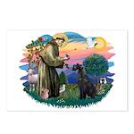 St Fran./ G Schnauzer (blk) Postcards (Package of