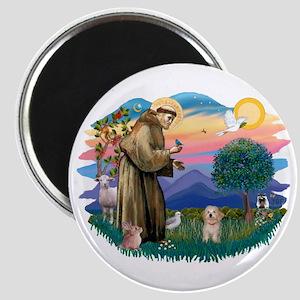 St.Fran. #2/ Havanese pup Magnet