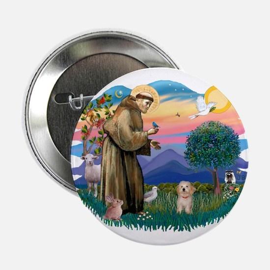 "St.Fran. #2/ Havanese pup 2.25"" Button"