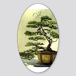 Cypress Sticker (Oval)