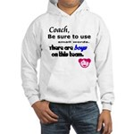 Use Small Words Hooded Sweatshirt