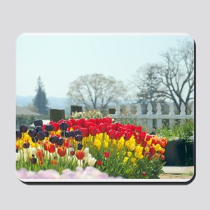 Simply tulips Mousepad