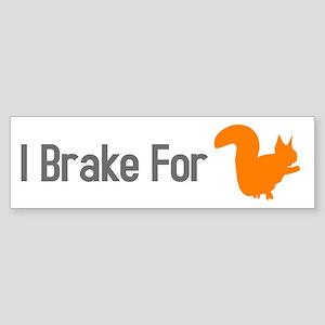 I Brake for Squirrels Sticker (Bumper)
