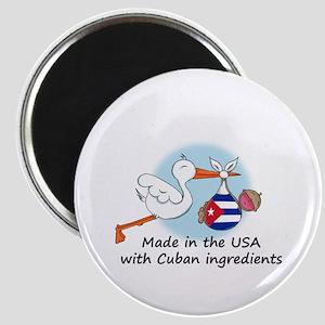 Stork Baby Cuba USA Magnet